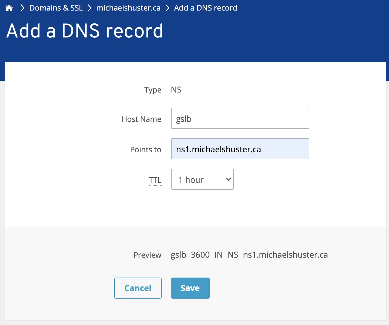 1&1 IONOS create NS record for Citrix ADC (NetScaler) GSLB subzone delegation
