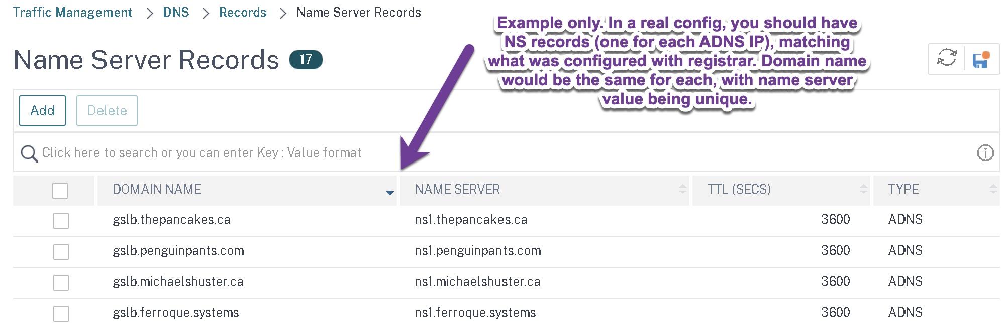 Citrix NetScaler ADC name server NS records example