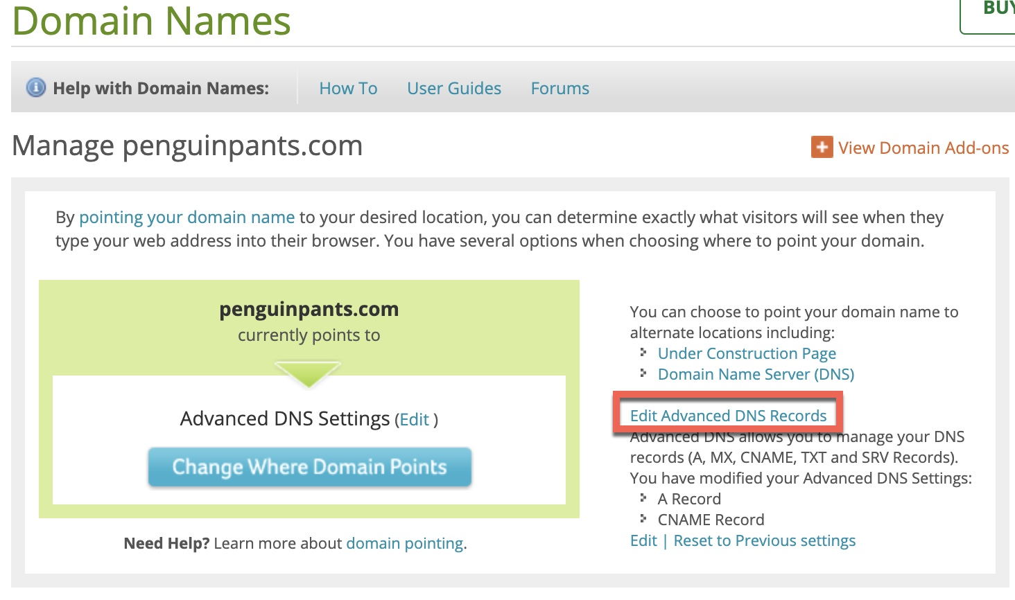 Networksolutions advanced DNS control panel for configuring Citrix NetScaler ADC GSLB settings
